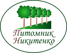 Питомник Никитенко